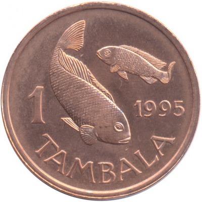 1 тамбала