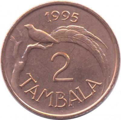 2 тамбалы