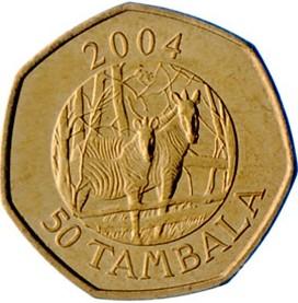 50 тамбал